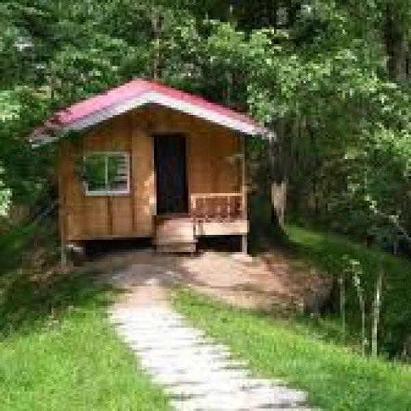 اجاره کلبه جنگلی رشت